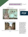 Impronte umane fossili