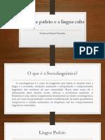 A Língua Padrão e a Língua Culta