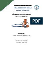 forense portafolio.docx