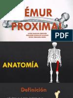 Femur Proximal, Tornillos Canulados de 7.0