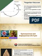 GYMNOSPERMAE AND ANGIOSPERMAE LIFE CYCLE FIX.pptx