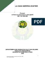 zoster.pdf.pdf