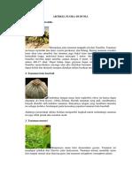 Artikel Flora Di Dunia