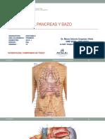 Ponencia Pancreas Actual