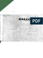 Galloper ii