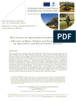 FM_WP20 Tocco Et Al Key Issues in Agricultural Labour Market