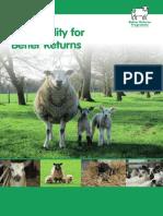 Ewe Fertility for Better Returns