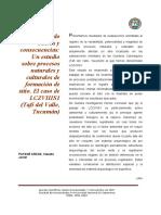 Patané Aráoz (2007) - Evaluando Causas y Consecuencias (Catamarca)