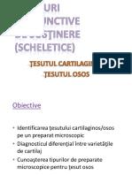 07.Tesuturi cartilaginos si osos.pdf