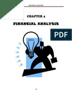 4 Financial Analysis