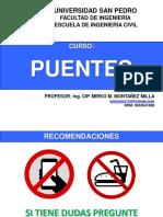 PUENTES USP.pdf