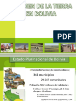 Bolivia Directrices Voluntarias(1)