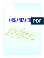 4 - Organizacion