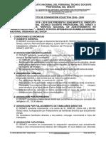 SINDICATO 2018 - 2019