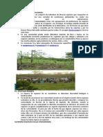 Ecologia Trófic1j