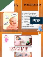 desarrollodellenguaje-160327124816.pdf