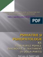 Psihopatologie 12.pptx