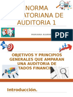 Norma Ecuatoriana de Auditoria 1
