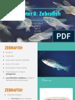 Chapter 8 - Zebrafish