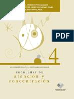 Problemas-de-Atencion-y-Concentracion.pdf