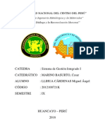 SISTEMA DE GESTION INTEGRADO