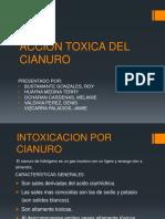 252952521 Accion Toxica Del Cn