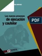 09 Los nuevos procesos de jecucion cautelar.pdf