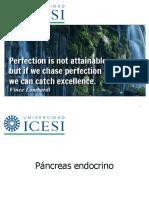 02 Fisiologia Del Pancreas (1)