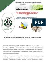 Plan Agricultura Urbana Para El Municipio Sucre - Ok-3