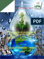 Proyecto Fluidos II SISTEMA de RIEGO Con Calculo