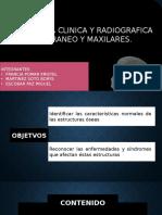 medicina dos.pptx