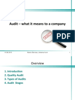 Audit - What It Means to a Company