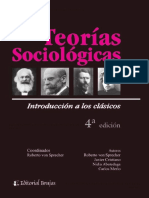 Varios autores - Teorías sociológicas
