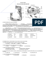 Activity Sheet- Cell