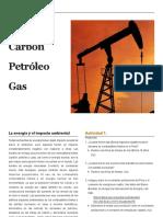 Energia Carbon Petroleo Gas