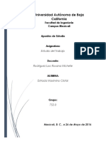 Apuntes-Etudio-Cristal-Estrada-Maximino.pdf