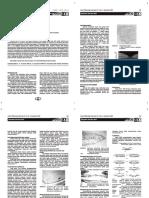 anatomi makula.pdf