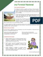 Semana-Forestal-Nacional.docx