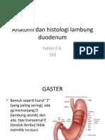 Anatomi Dan Histologi Lambung Duodenum