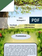 (4) Analisis Ekonomi Sumber Daya Alam