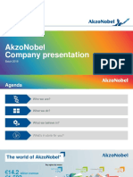 AkzoNobel Company Presentation_2017