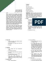 laporan lesi meniskus.doc