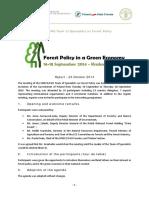 Final_report_edited.pdf