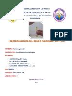 Odontognesis(10)