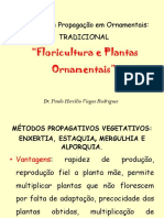 Tradicionalflor2012.pdf