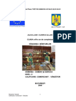 Auxiliar Curricular - Vanzarea Marfurilor
