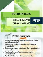Ppt Fotosintesis Reaksi Gelap (Siklus Calvin)