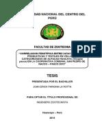 Tesis Pariona Converted