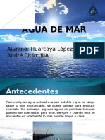 Tema 19 - AGUA DE MAR.pptx