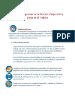SUNAT_Planes y Programas_Resumen del curso.pdf